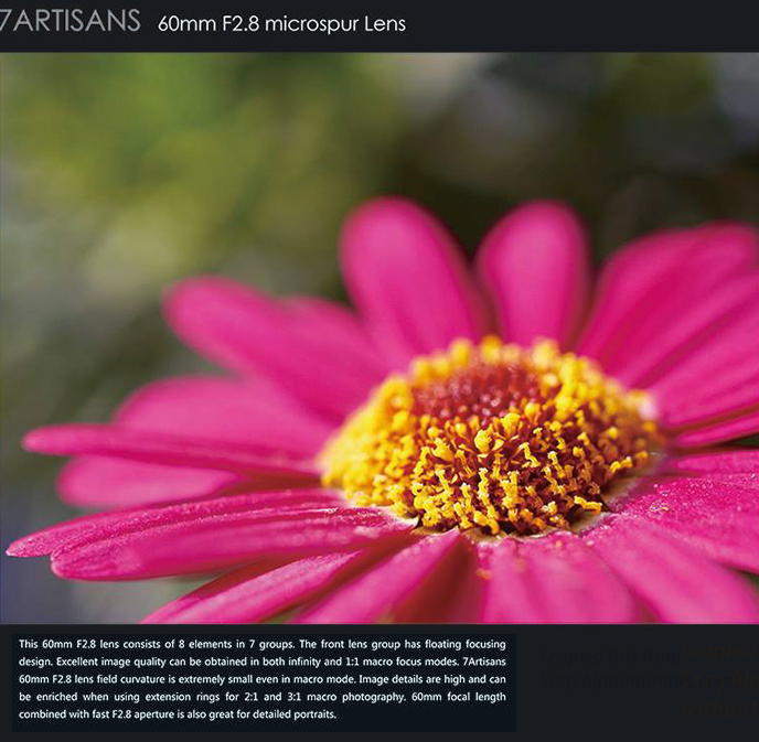 Пример фотографии, сделанной с помощью объектива 7Artisans 60mm f/2.8