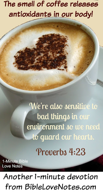 smelling coffee releases antioxidants, smelling coffee good for us, proverbs 4:23
