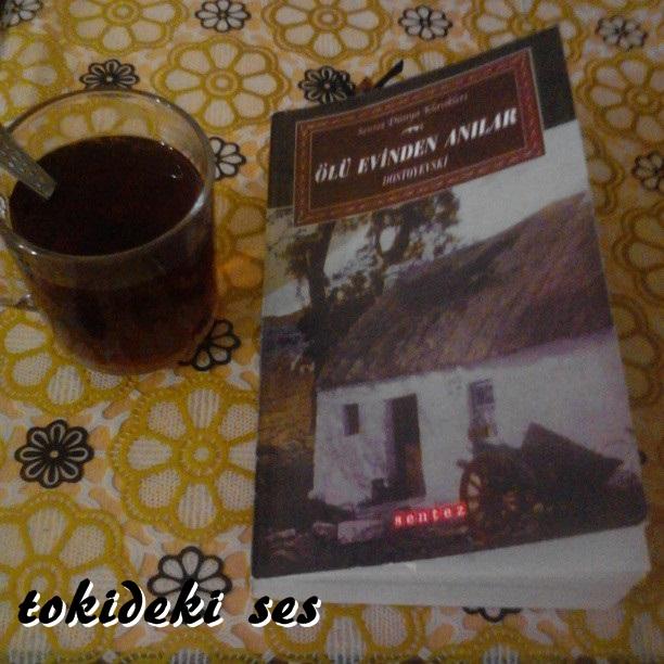 tokideki sesin okuduğu kitap, ölü evinden anılar