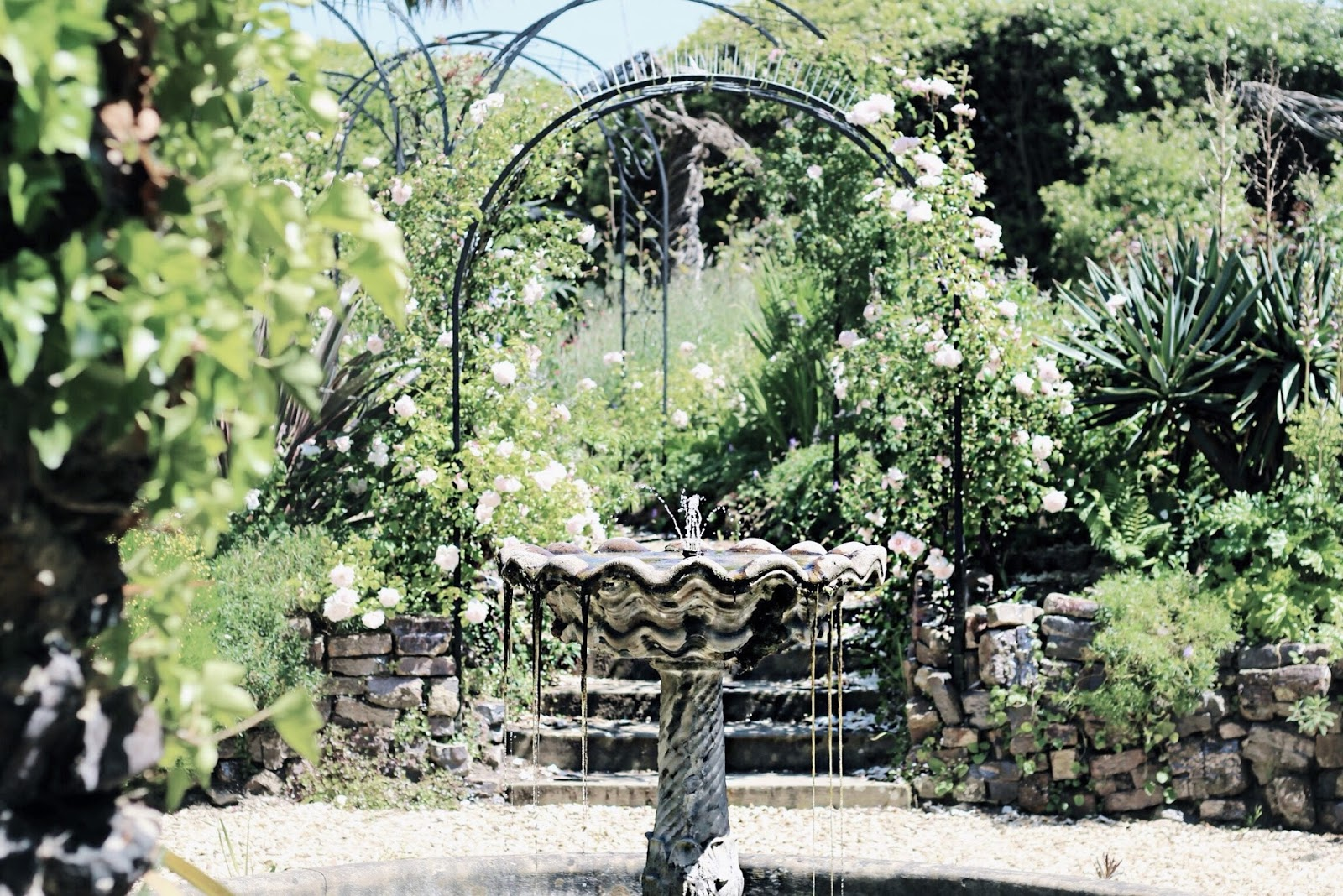 Water Fountain Secret Garden Setting