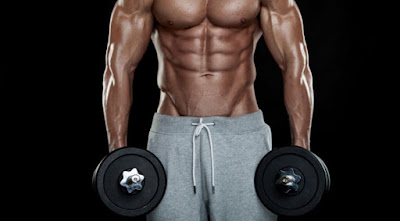 Workouts With Dumbbells For Big Biceps