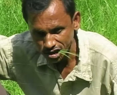Menu : Grass