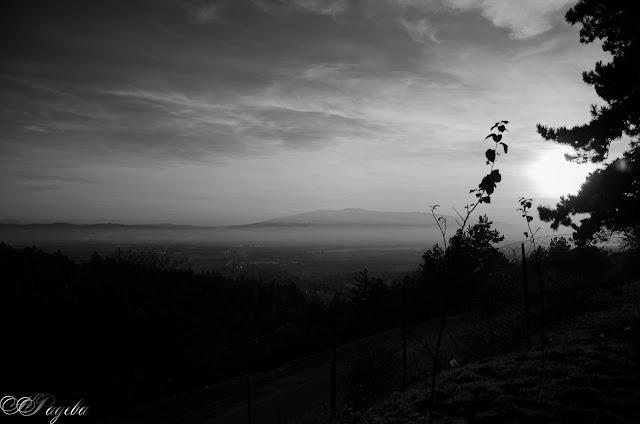 Мъгла-Fog