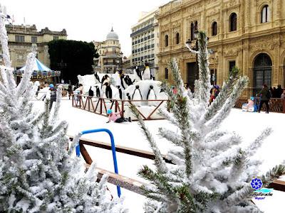 Sevilla - Plaza de San Francisco - Navidad 2017 04