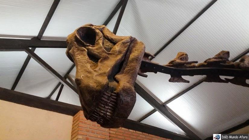 Exposição do Museu de História Natural da UFMG - Belo Horizonte