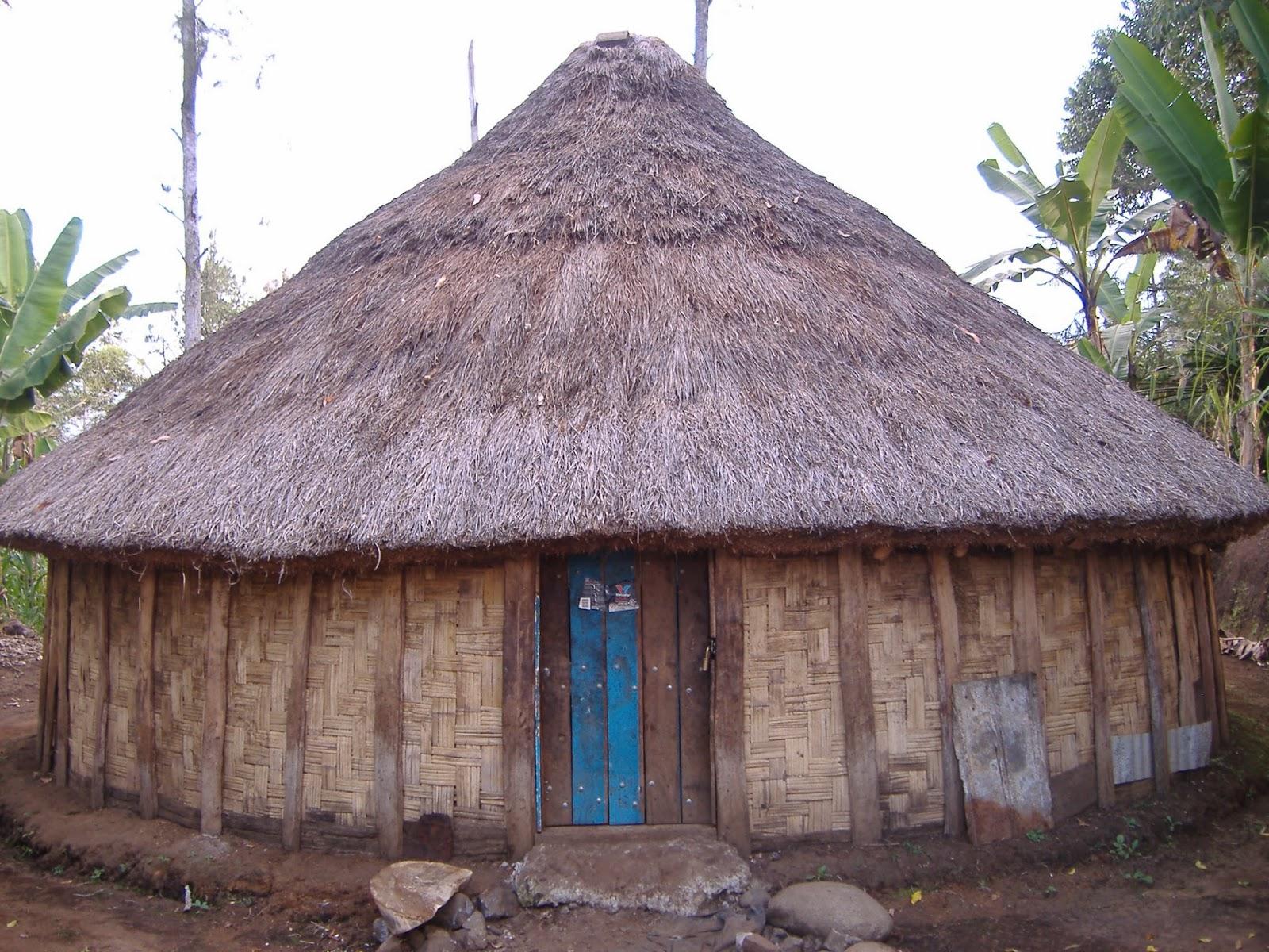 94 Gambar Rumah Adat Di Papua Terbaru