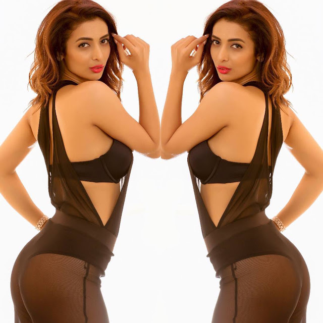 Heena Panchal Sizzling Pics in Bikini Summer May 2018 (1).jpg