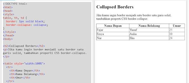 HTML Table - Borders Runtuh Satu Garis