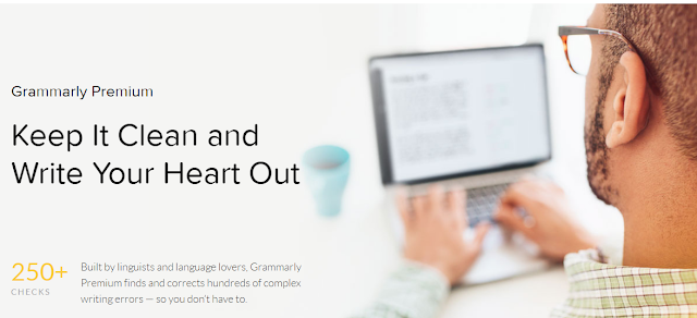 Grammarly premium features