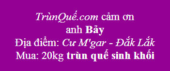 Trùn quế Cư Kuin - Cư M'gar