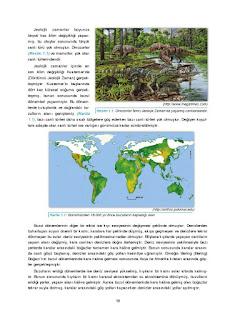 11. Sınıf Coğrafya Ders Kitabı Cevapları Gün Yayınları Sayfa 19