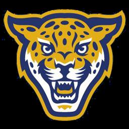 logoteam jaguar