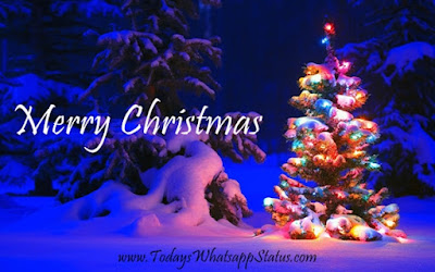100 Merry Christmas Wishes Quotes Greetings Pictures 2017