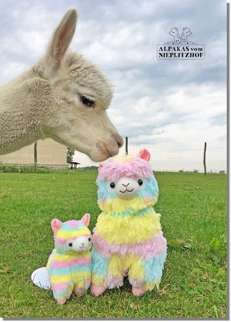 Regenbogen Alpakas Kuscheltiere Plüschtiere kaufen