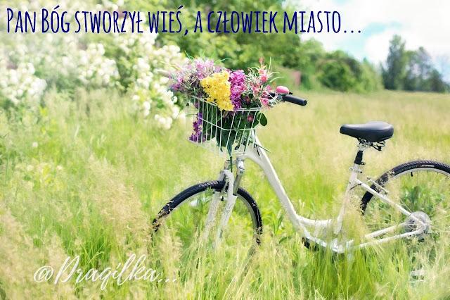 Mam dość Warszawy... ja! tu urodzona i wychowana!