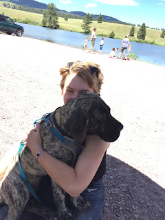 large brindle mastiff puppy on Cecily's lap. Very little of Cecily is visible. Lake and lake-goers in background.