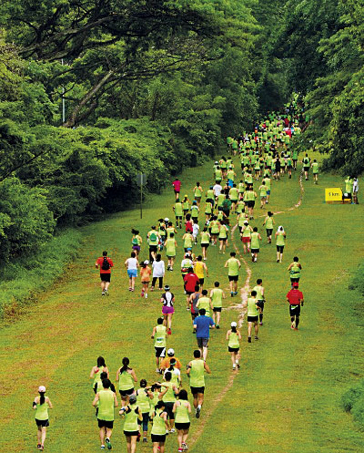 The green corridor run, which started in 2013, is an annual event that celebrates the natural-like green artery of the previous railway line.