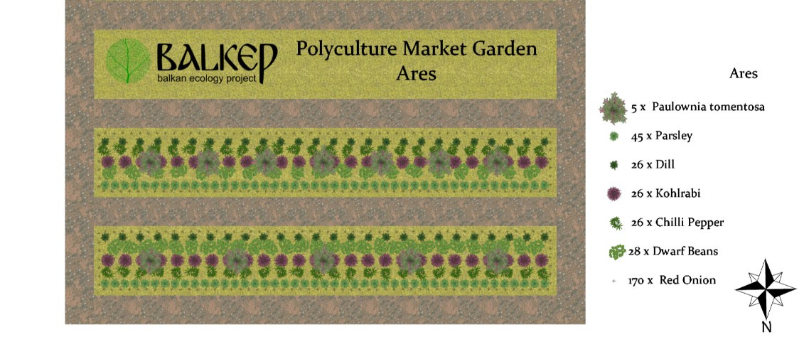 Balkan Ecology Project : Polyculture Project - Market Garden Study ...