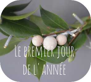http://les-petits-doigts-colores.blogspot.be/search?updated-max=2017-01-06T05:54:00-08:00&max-results=1