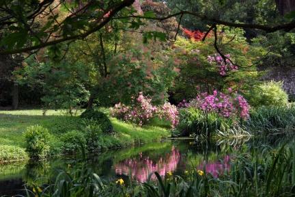 La primavera ai Giardini di Ninfa – E se domani a Roma