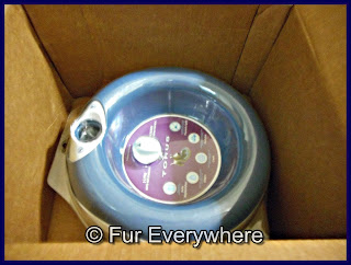 The Torus water bowl in the box it came in.