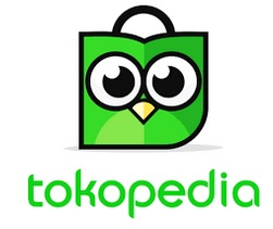 https://www.tokopedia.com/padepokanit/video-tutorial-excel-level-basic-mahir