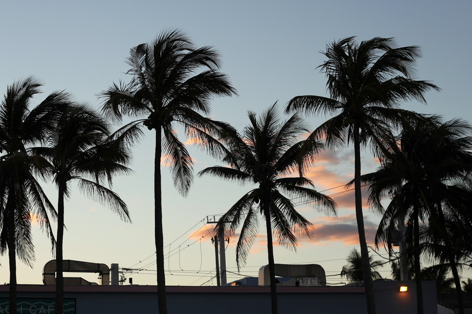 First Impressions - Fort Lauderdale, Florida