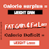 Weight Loss & Weight Gain Explained - Calories, Nutrition
