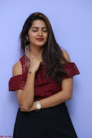 Pavani Gangireddy in Cute Black Skirt Maroon Top at 9 Movie Teaser Launch 5th May 2017  Exclusive 092.JPG