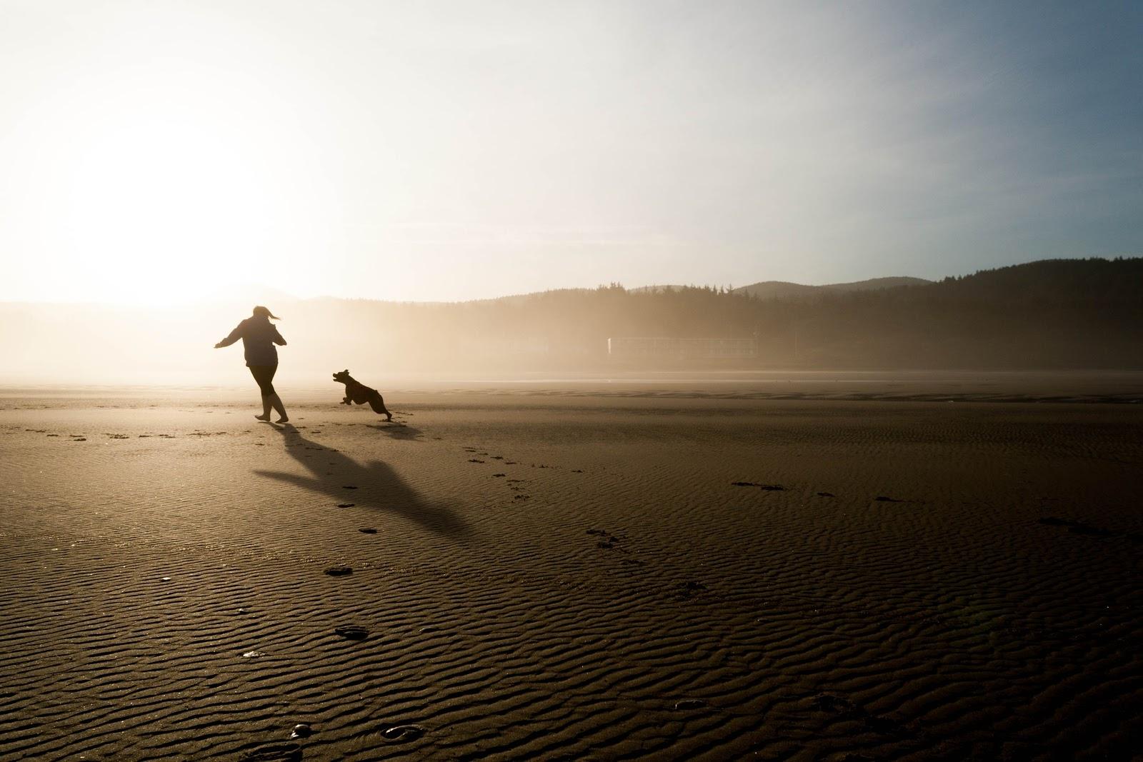 犬と一緒に浜辺を走る人