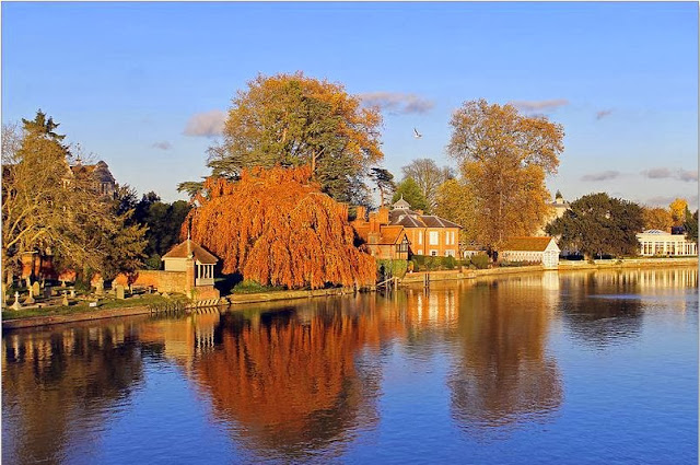 Buy Wall Art of River Thames at Marlow