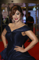 Payal Ghosh aka Harika in Dark Blue Deep Neck Sleeveless Gown at 64th Jio Filmfare Awards South 2017 ~  Exclusive 127.JPG