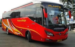 Nomor Telepon Agen Bus Putera Mulya Sejahtera