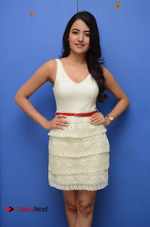 Actress Ruksaar Mir Pictures in Short Dress at Showtime Movie Logo Launch  0004