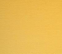 http://kolorowyjarmark.pl/pl/p/Gruby-papier-ozdobny-Scrapberrys-Light-gold/2399