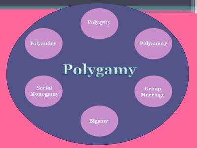 Peut 17, à 8: Heartiste soutient que si tout le monde était polyamour, lhomme moyen à.