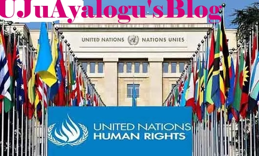Nigeria seeks re-election into UN Human Rights Council