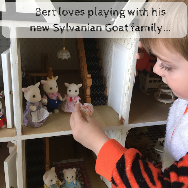 Bert playing with his Goat Family from Sylvanian Families