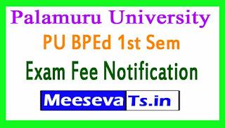 Palamuru University PU BPEd 1st Sem Exam Fee Notification 2017