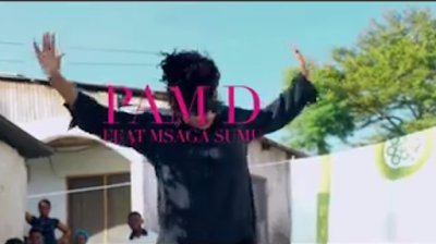 Video Pam D Ft Msaga Sumu - UMEPENYA
