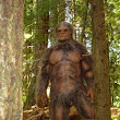 How will Bigfoot be announced to the world? Will the government make an announcement?