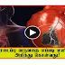 TAMIL HEALTH TIPS - heart attack precaution