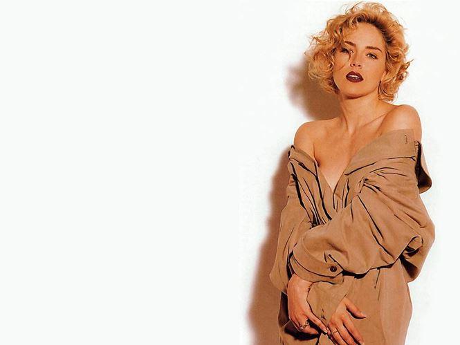 Nhan sắc 'thanh xuân rực lửa' của mỹ nhân 'Bản năng gốc' Sharon Stone - Ảnh 11