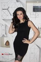 Hollywood Actress Madalina Bellariu Ion Poshoot Gallery For Film Dobaara .COM 0002.jpg