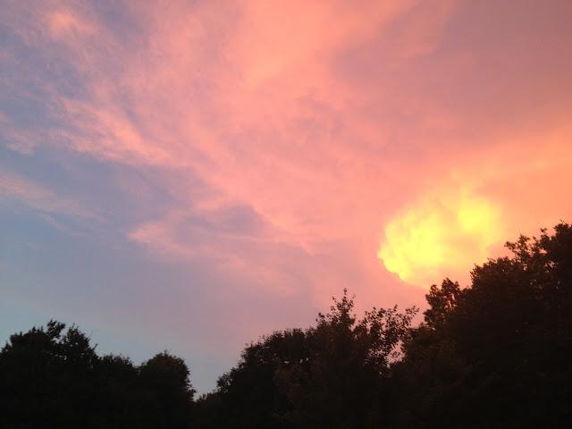 pink blue sunset