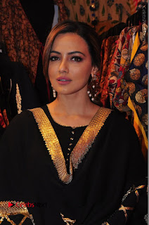 Bollywood Actress Sana Khan Launches Aakrithi Exibition  0122.JPG