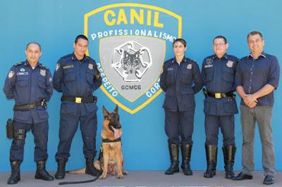 Guardas Municipais de Campo Grande (MS) trocam experiências de adestramento com GCM de São Vicente