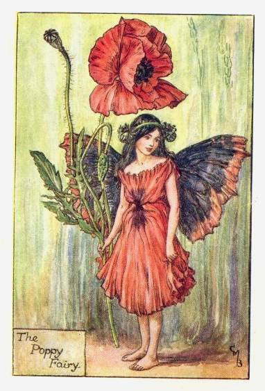 Circle of the Year: Flower Fairies