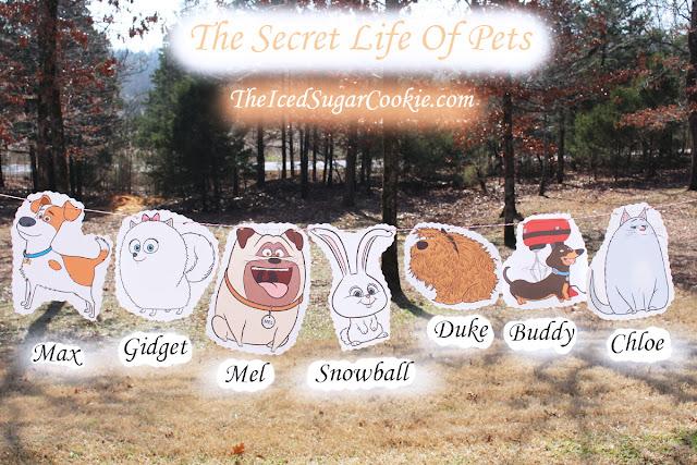 The Secret Life Of Pets Birthday Party Flag Hanging Bunting Banner Garland DIY Idea-Max, Gidget, Mel, Duke, Buddy, Chloe, Snowball