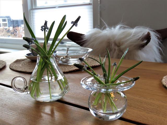 Perleblomster i forskjellige glassvaser - boddekking - interiør